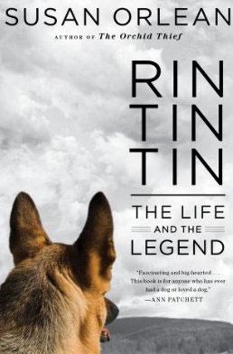 Rin, Tin, Tin
